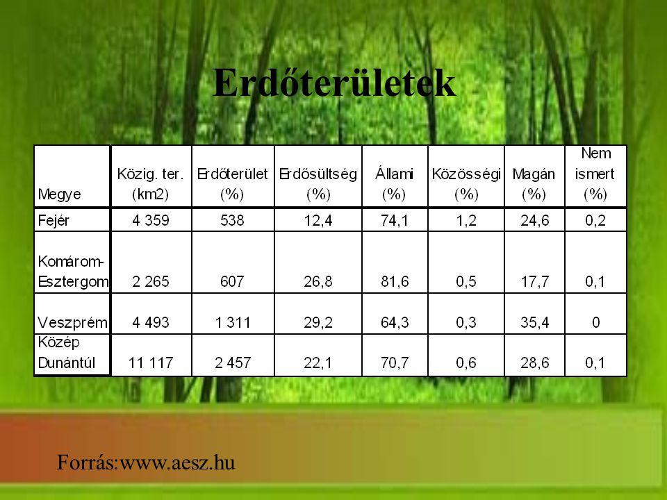 Erdőterületek Forrás:www.aesz.hu
