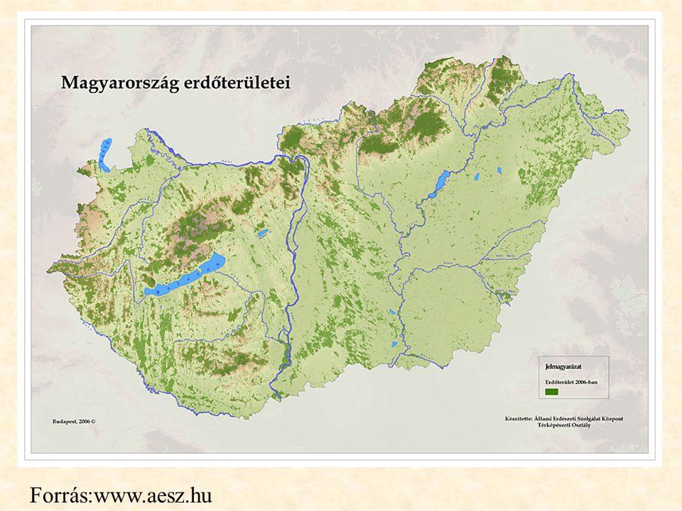 Forrás:www.aesz.hu