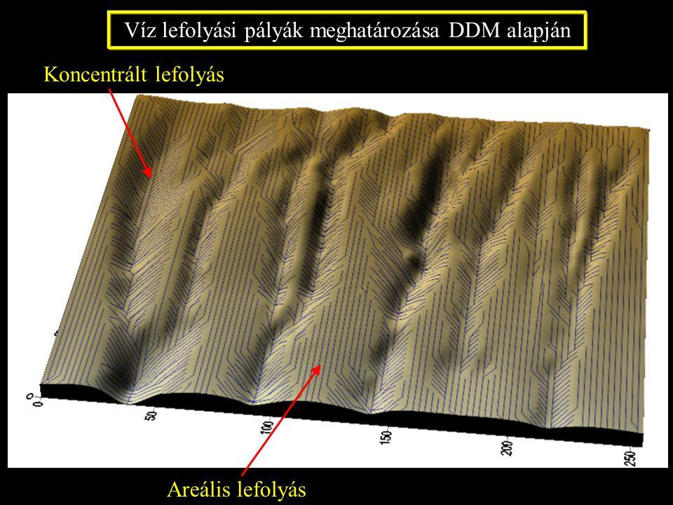Víz lefolyási pályák meghatározása DDM alapján Koncentrált lefolyás Areális lefolyás
