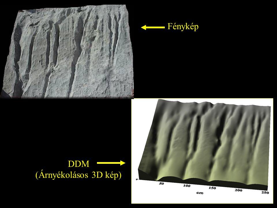 Fénykép DDM (Árnyékolásos 3D kép)