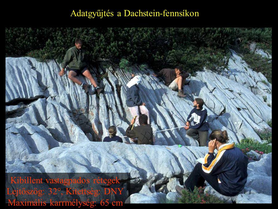 Adatgyűjtés a Dachstein-fennsíkon Kibillent vastagpados rétegek Lejtőszög: 32°, Kitettség: DNY Maximális karrmélység: 65 cm