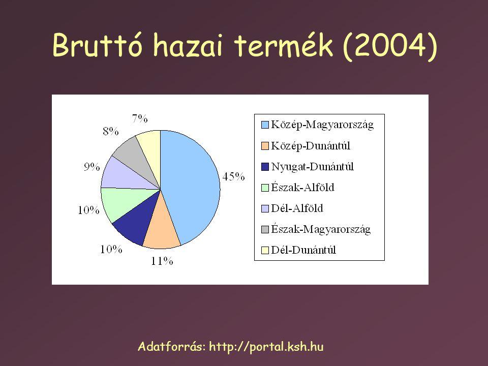 Bruttó hazai termék (2004) Adatforrás: http://portal.ksh.hu