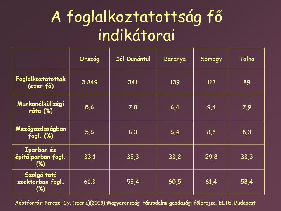 A foglalkoztatottság fő indikátorai OrszágDél-DunántúlBaranyaSomogyTolna Foglalkoztatottak (ezer fő) 3 84934113911389 Munkanélküliségi ráta (%) 5,67,86,49,47,9 Mezőgazdaságban fogl.
