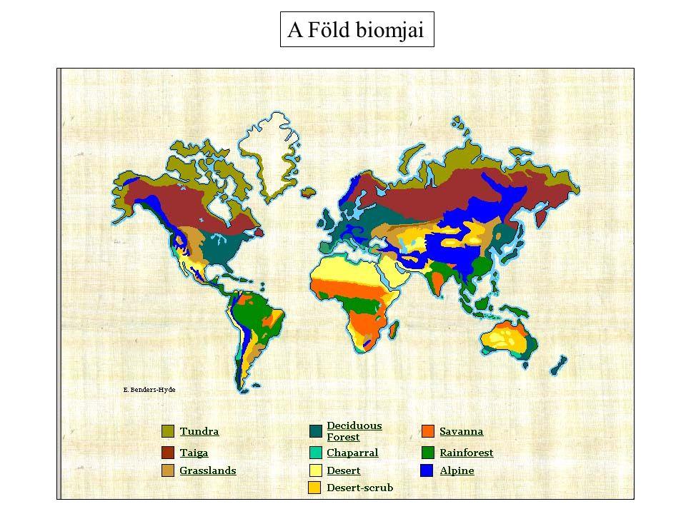 A Föld biomjai