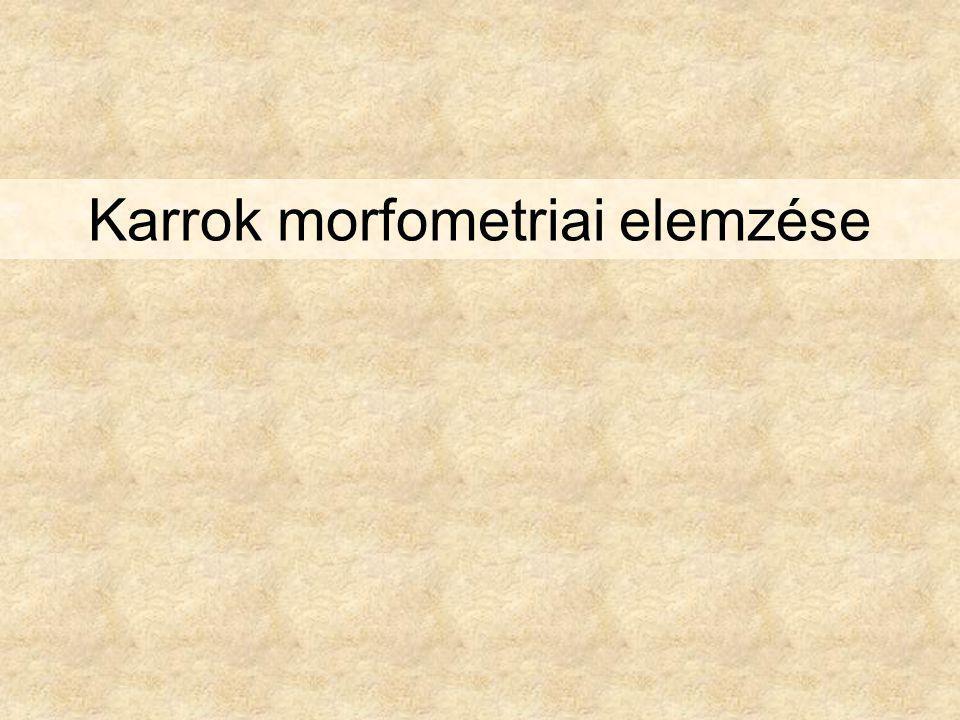 Karrok morfometriai elemzése