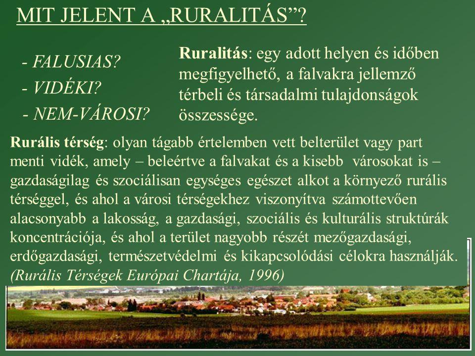 Rurális térségek fejlettségi típusai 2.
