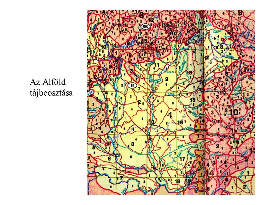 Tájtípusok az Alföldön Futóhomokos hordalékkúp-síkságok (3) Lösszel fedett hordalékkúp-síkságok (2) Magas löszös síkság Alacsony löszös síkság Ártéri-síkságok (1) Medenceperemi (teraszos) hordalékkúp-síkságok (4)