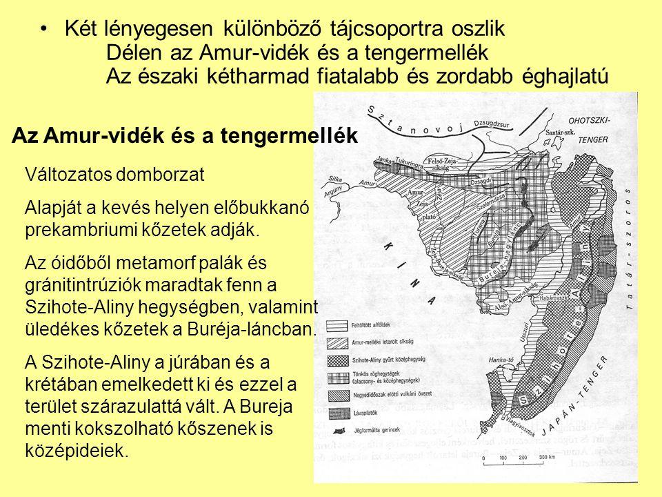 Két lényegesen különböző tájcsoportra oszlik Délen az Amur-vidék és a tengermellék Az északi kétharmad fiatalabb és zordabb éghajlatú Az Amur-vidék és