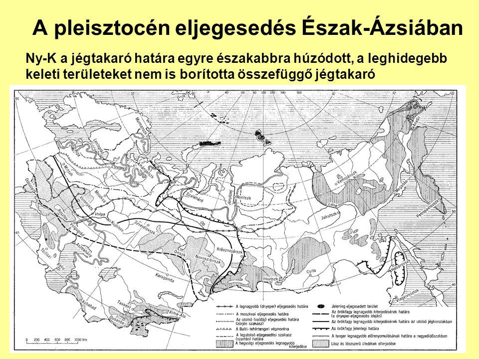 A pleisztocén eljegesedés Észak-Ázsiában Ny-K a jégtakaró határa egyre északabbra húzódott, a leghidegebb keleti területeket nem is borította összefüg