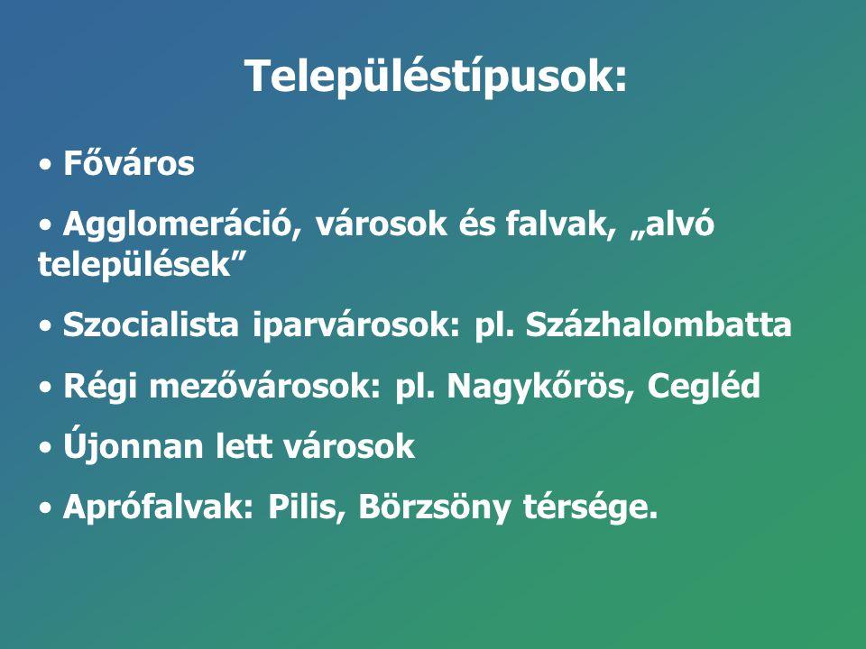 """Településtípusok: Főváros Agglomeráció, városok és falvak, """"alvó települések"""" Szocialista iparvárosok: pl. Százhalombatta Régi mezővárosok: pl. Nagykő"""
