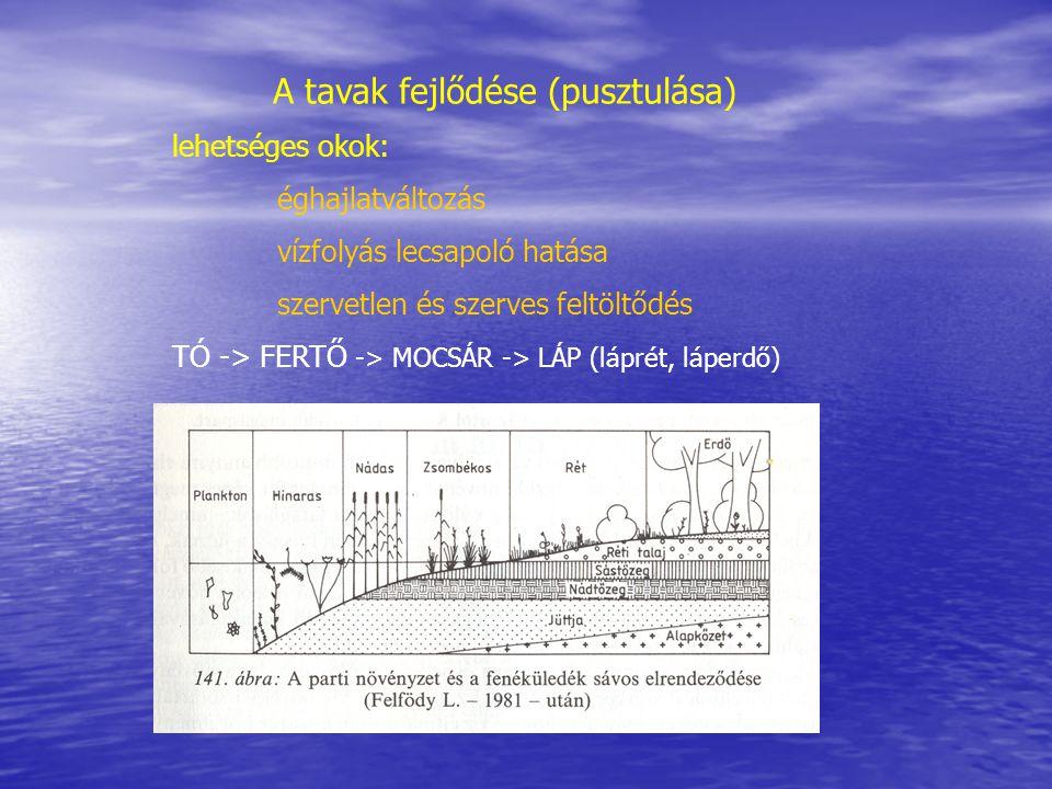 A tavak vízgyűjtő területe és hidrometriai jellemzői