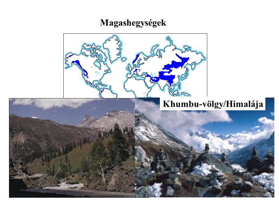 Magashegységek Khumbu-völgy/Himalája