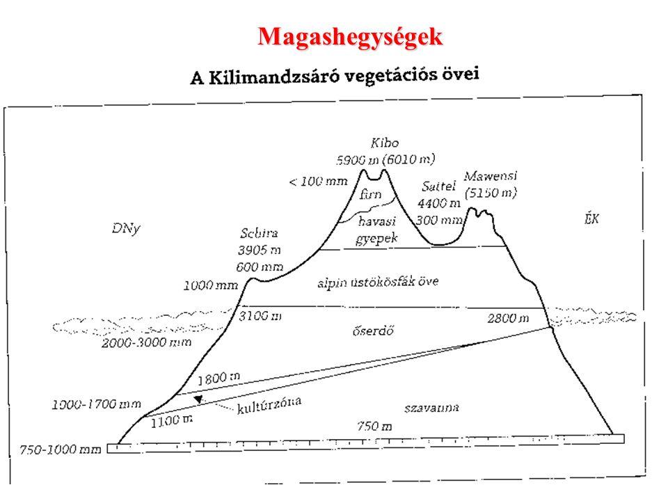 Magassági (vertikális zónák