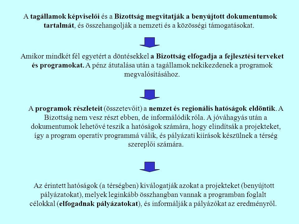 A tagállamok képviselői és a Bizottság megvitatják a benyújtott dokumentumok tartalmát, és összehangolják a nemzeti és a közösségi támogatásokat.