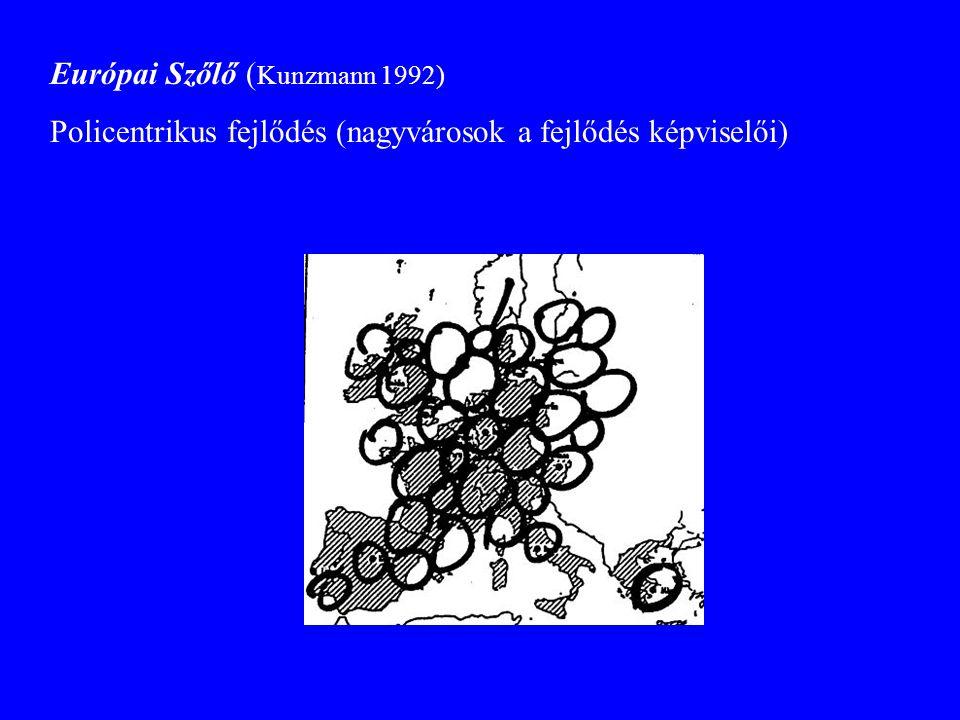 Európai Szőlő ( Kunzmann 1992) Policentrikus fejlődés (nagyvárosok a fejlődés képviselői)