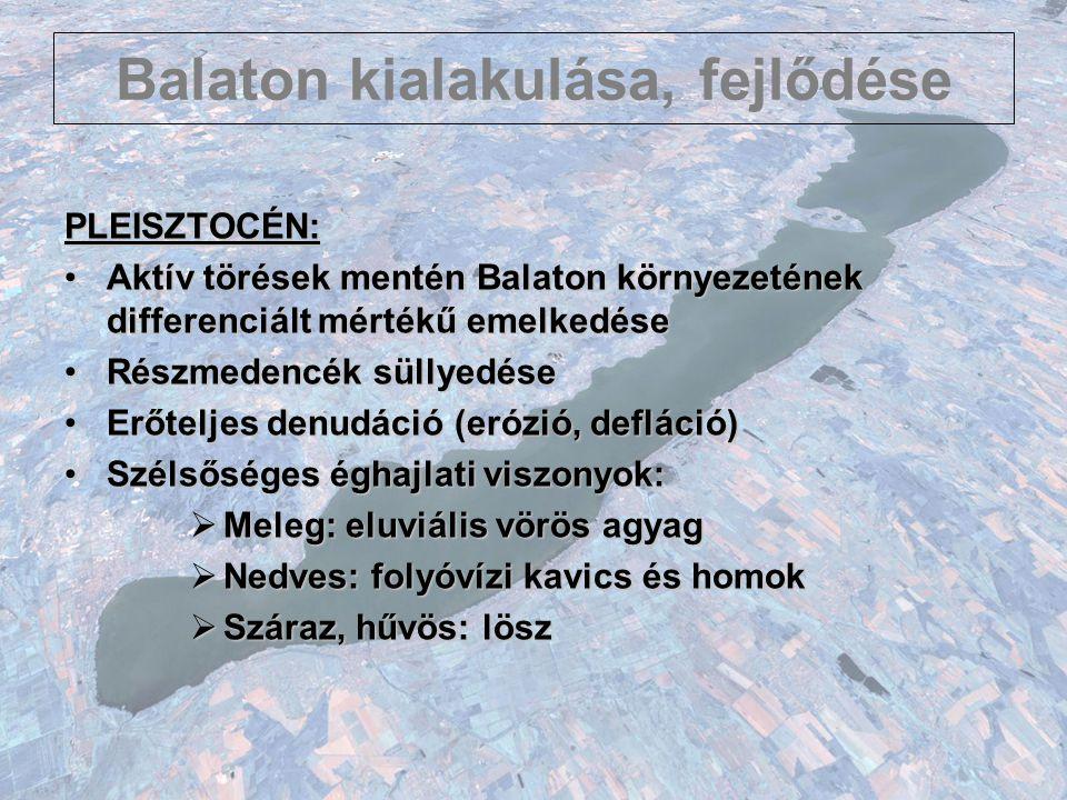 Balaton kialakulása, fejlődése PLEISZTOCÉN: Aktív törések mentén Balaton környezetének differenciált mértékű emelkedéseAktív törések mentén Balaton kö