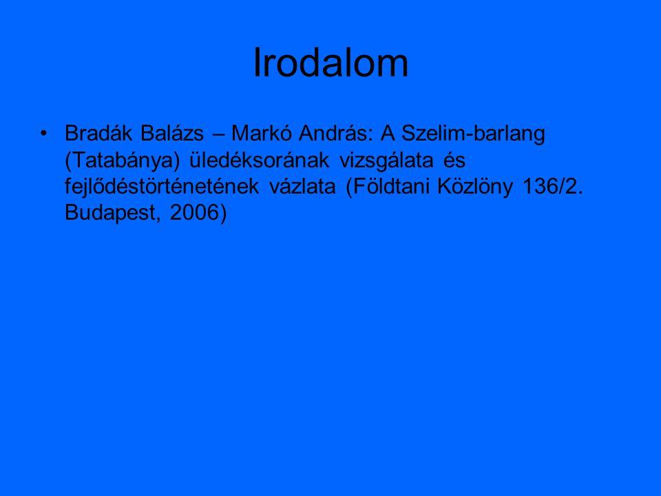 Irodalom Bradák Balázs – Markó András: A Szelim-barlang (Tatabánya) üledéksorának vizsgálata és fejlődéstörténetének vázlata (Földtani Közlöny 136/2.