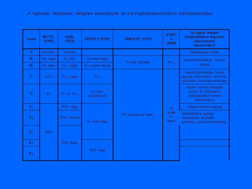 Szint MOTTL (1941) GAÁL (1952) VÉRTES (1958)JÁNOSSY (1979) VÖRÖ S (2000) Az egyes rétegek kialakulásához kapcsolt őskörnyezeti rekonstrukció Aholocén felszakadás,omlás B1B1 W 3 végeW 2-3 /W 3 W 3 eleje/vége W 3 -nál idősebbW 2-3 mészkőtörmelékes, löszös agyag B2B2 W 3 elejeW 1-2 végeW 2 tundrai fázisa CW2-3W 1-2 végeW 1-2 W1 (subalyuki fázis) W 2 (szele tai fázis) mészkőtörmelékes barna agyag,/nedvesebb, enyhébb periódus, növényborítottság DW1W1 W 1, ill.