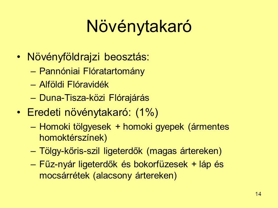 14 Növénytakaró Növényföldrajzi beosztás: –Pannóniai Flóratartomány –Alföldi Flóravidék –Duna-Tisza-közi Flórajárás Eredeti növénytakaró: (1%) –Homoki