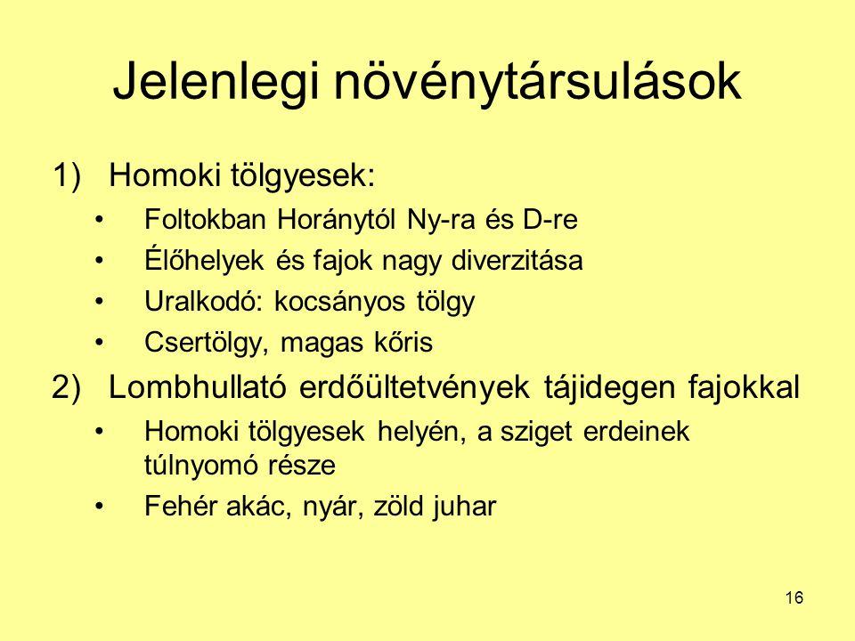 16 Jelenlegi növénytársulások 1)Homoki tölgyesek: Foltokban Horánytól Ny-ra és D-re Élőhelyek és fajok nagy diverzitása Uralkodó: kocsányos tölgy Cser