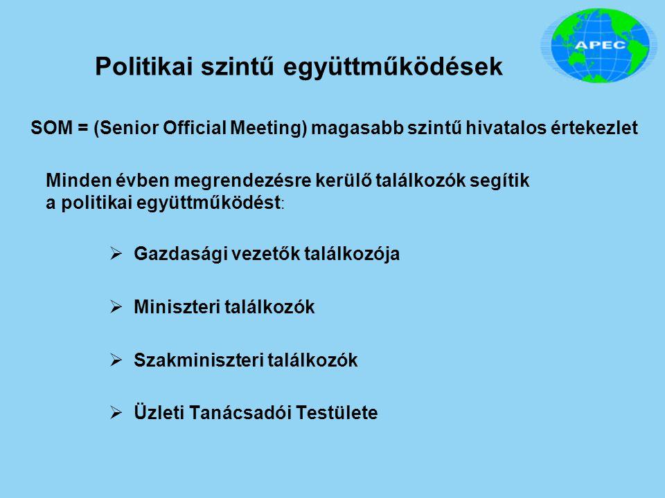 Politikai szintű együttműködések  Gazdasági vezetők találkozója  Miniszteri találkozók  Szakminiszteri találkozók  Üzleti Tanácsadói Testülete Min