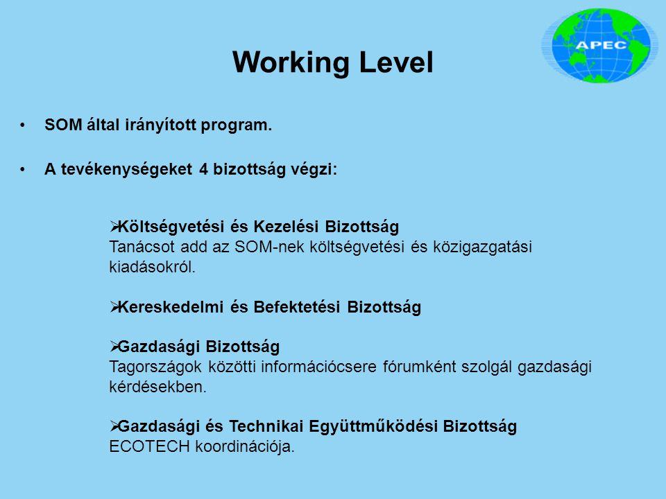 Working Level SOM által irányított program. A tevékenységeket 4 bizottság végzi:  Költségvetési és Kezelési Bizottság Tanácsot add az SOM-nek költség