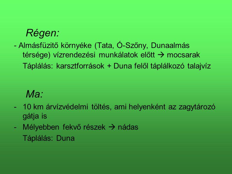 Régen: - Almásfüzitő környéke (Tata, Ó-Szőny, Dunaalmás térsége) vízrendezési munkálatok előtt  mocsarak Táplálás: karsztforrások + Duna felől táplál