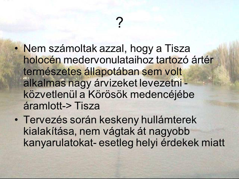 ? Nem számoltak azzal, hogy a Tisza holocén medervonulataihoz tartozó ártér természetes állapotában sem volt alkalmas nagy árvizeket levezetni - közve