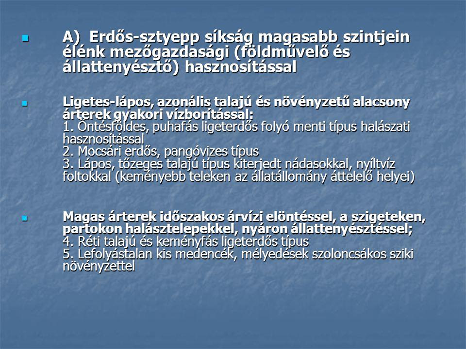A) Erdős-sztyepp síkság magasabb szintjein élénk mezőgazdasági (földművelő és állattenyésztő) hasznosítással A) Erdős-sztyepp síkság magasabb szintjein élénk mezőgazdasági (földművelő és állattenyésztő) hasznosítással Ligetes-lápos, azonális talajú és növényzetű alacsony árterek gyakori vízborítással: 1.