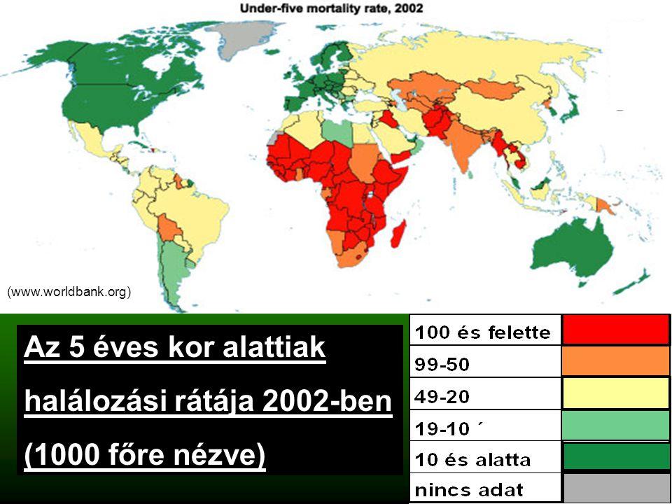 Az 5 éves kor alattiak halálozási rátája 2002-ben (1000 főre nézve) (www.worldbank.org)