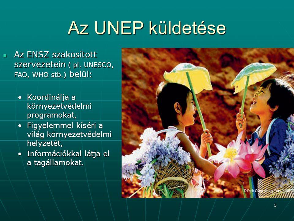 5 Az UNEP küldetése Az ENSZ szakosított szervezetein ( pl. UNESCO, FAO, WHO stb.) belül: Az ENSZ szakosított szervezetein ( pl. UNESCO, FAO, WHO stb.)