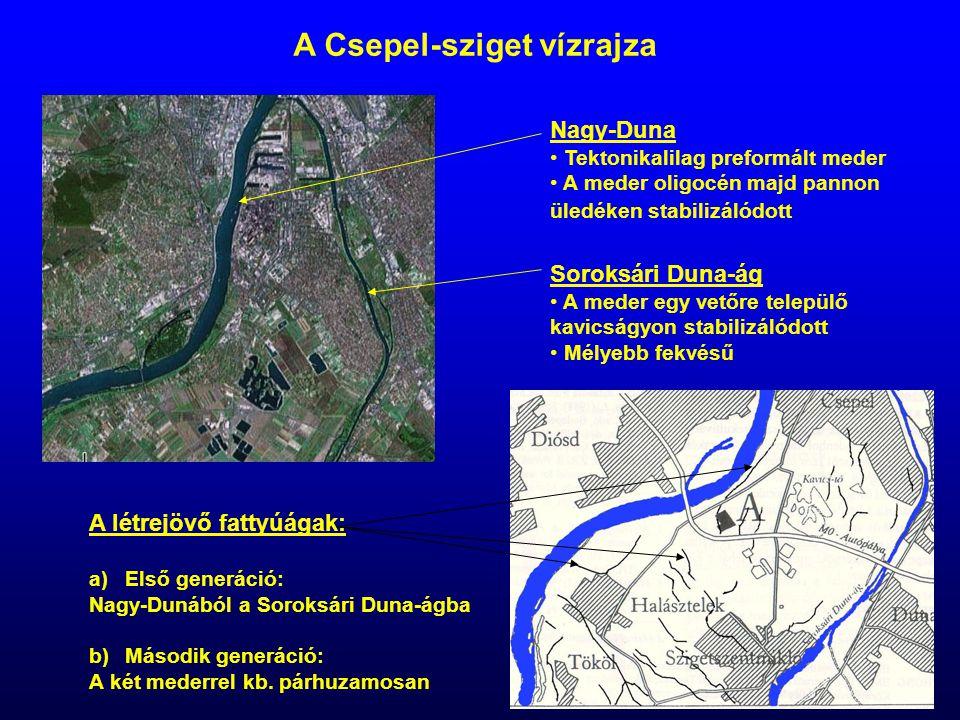 A Csepel-sziget vízrajza Nagy-Duna Tektonikalilag preformált meder A meder oligocén majd pannon üledéken stabilizálódott Soroksári Duna-ág A meder egy