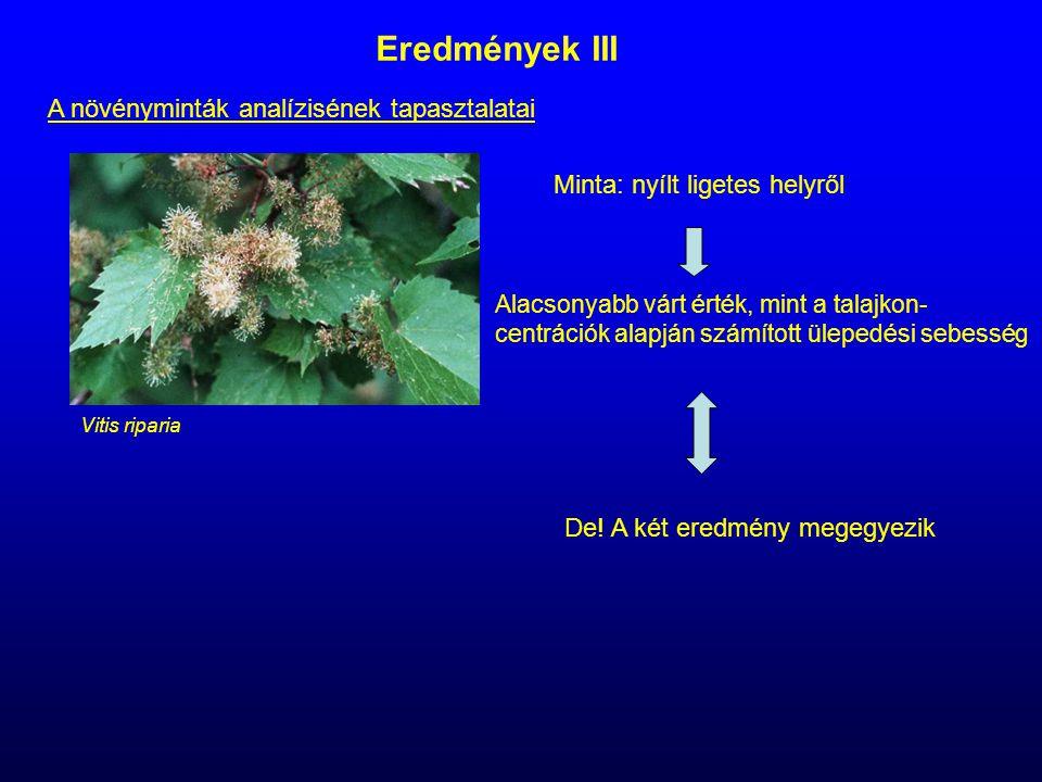 Eredmények III A növényminták analízisének tapasztalatai Vitis riparia Minta: nyílt ligetes helyről Alacsonyabb várt érték, mint a talajkon- centráció