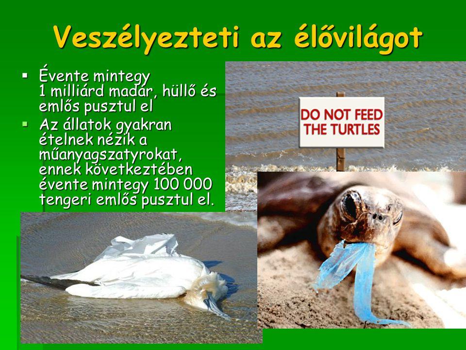 Veszélyezteti az élővilágot  Évente mintegy 1 milliárd madár, hüllő és emlős pusztul el  Az állatok gyakran ételnek nézik a műanyagszatyrokat, ennek
