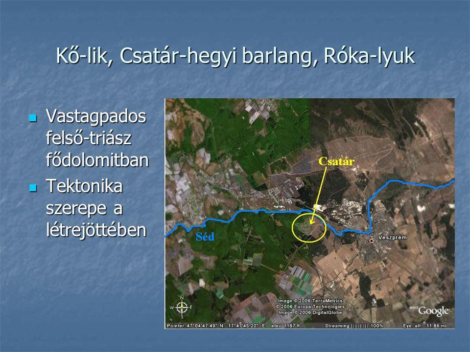 Kő-lik, Csatár-hegyi barlang, Róka-lyuk Vastagpados felső-triász fődolomitban Vastagpados felső-triász fődolomitban Tektonika szerepe a létrejöttében