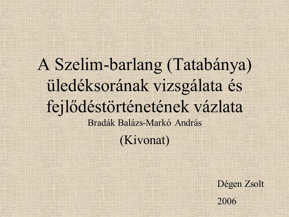 A Szelim-barlang (Tatabánya) üledéksorának vizsgálata és fejlődéstörténetének vázlata Bradák Balázs-Markó András (Kivonat) Dégen Zsolt 2006