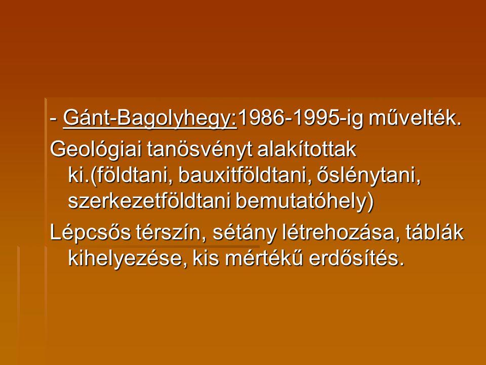 - Gánt-Bagolyhegy:1986-1995-ig művelték. Geológiai tanösvényt alakítottak ki.(földtani, bauxitföldtani, őslénytani, szerkezetföldtani bemutatóhely) Lé