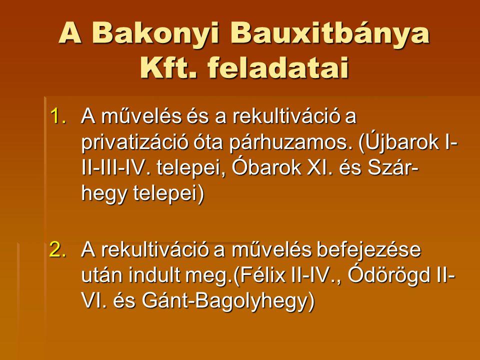 A Bakonyi Bauxitbánya Kft. feladatai 1.A művelés és a rekultiváció a privatizáció óta párhuzamos. (Újbarok I- II-III-IV. telepei, Óbarok XI. és Szár-