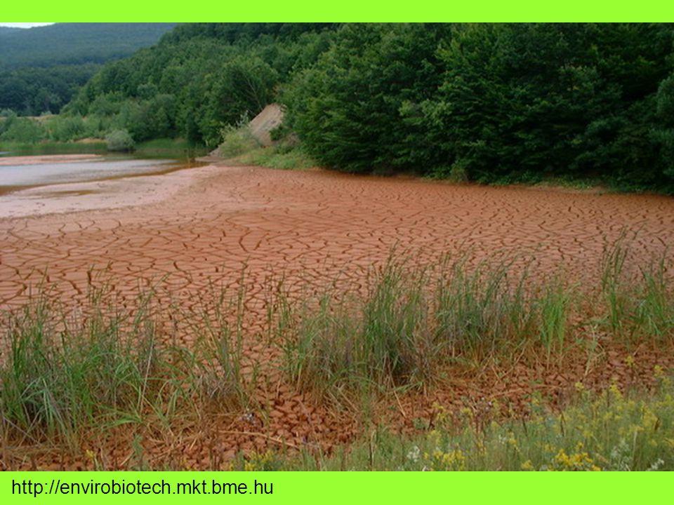 Tározók Kazetták: növényzetet eltávolitották felső, humuszos réteget elhordták Felszánt, iszapos, homokos agyagot tömöríttették (vízzáró agyagpaplan nincs) I-VI tározók gátjai a zagytér alatti iszapos anyagból VII fólia Megfelelő védettség hiányában a szennyezett víz a talajvízzel keveredik
