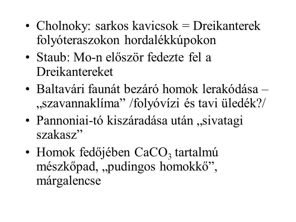 """Cholnoky: sarkos kavicsok = Dreikanterek folyóteraszokon hordalékkúpokon Staub: Mo-n először fedezte fel a Dreikantereket Baltavári faunát bezáró homok lerakódása – """"szavannaklíma /folyóvízi és tavi üledék / Pannoniai-tó kiszáradása után """"sivatagi szakasz Homok fedőjében CaCO 3 tartalmú mészkőpad, """"pudingos homokkő , márgalencse"""