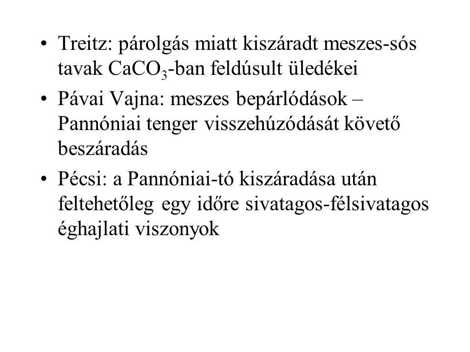 Treitz: párolgás miatt kiszáradt meszes-sós tavak CaCO 3 -ban feldúsult üledékei Pávai Vajna: meszes bepárlódások – Pannóniai tenger visszehúzódását követő beszáradás Pécsi: a Pannóniai-tó kiszáradása után feltehetőleg egy időre sivatagos-félsivatagos éghajlati viszonyok