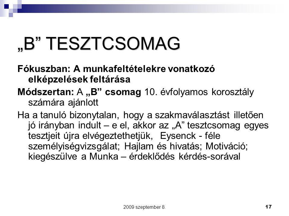 """2009 szeptember 8.17 """"B"""" TESZTCSOMAG Fókuszban: A munkafeltételekre vonatkozó elképzelések feltárása Módszertan: A """"B"""" csomag 10. évfolyamos korosztál"""