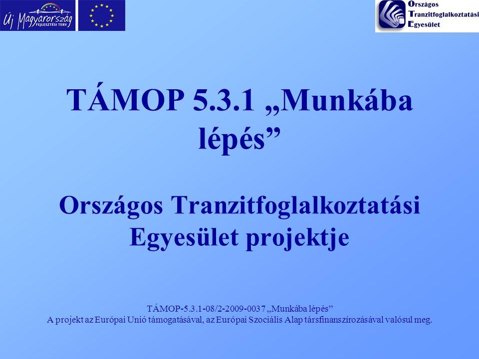 """TÁMOP-5.3.1-08/2-2009-0037 """"Munkába lépés"""" A projekt az Európai Unió támogatásával, az Európai Szociális Alap társfinanszírozásával valósul meg. TÁMOP"""