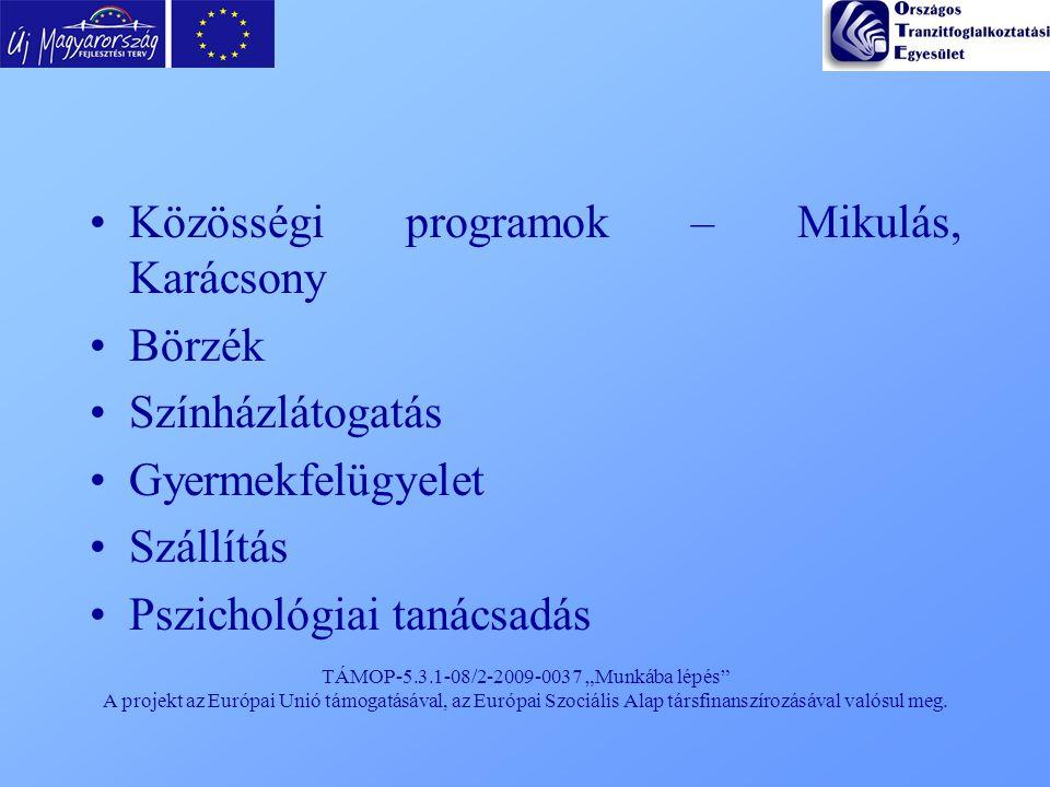 """TÁMOP-5.3.1-08/2-2009-0037 """"Munkába lépés"""" A projekt az Európai Unió támogatásával, az Európai Szociális Alap társfinanszírozásával valósul meg. Közös"""
