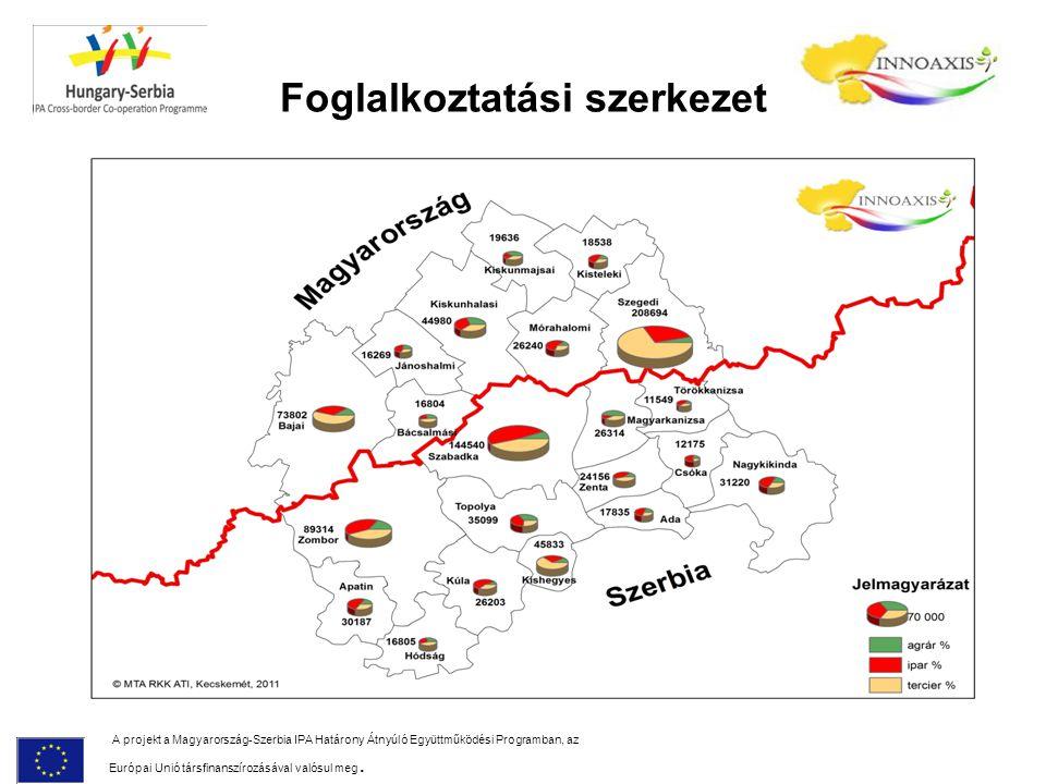 Foglalkoztatási szerkezet A projekt a Magyarország-Szerbia IPA Határony Átnyúló Együttműködési Programban, az Európai Unió társfinanszírozásával valós