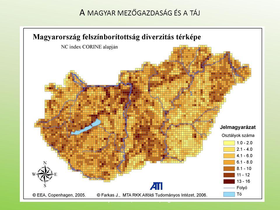 A MAGYAR MEZŐGAZDASÁG ÉS A TÁJ Nyilvános vita, 2010. okt. 20., Szeged