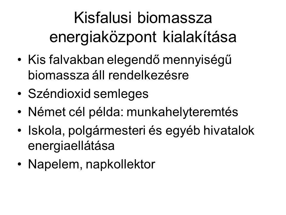 Kisfalusi biomassza energiaközpont kialakítása Kis falvakban elegendő mennyiségű biomassza áll rendelkezésre Széndioxid semleges Német cél példa: munkahelyteremtés Iskola, polgármesteri és egyéb hivatalok energiaellátása Napelem, napkollektor