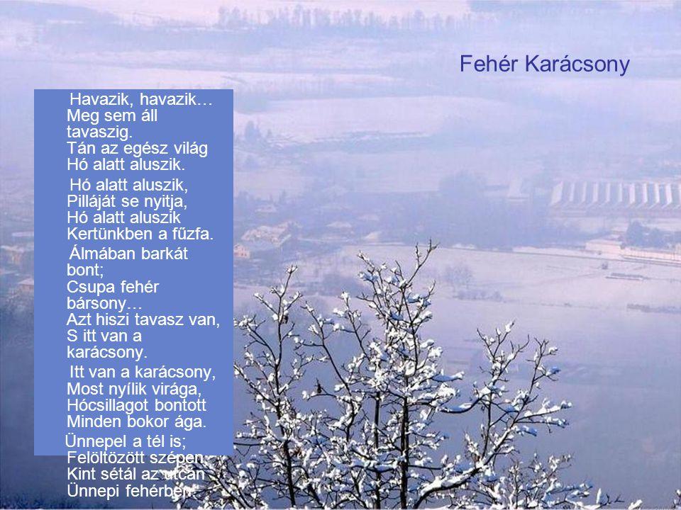 Kányádi Sándor: Isten háta mögött Üres az istálló s a jászol idén se lesz nálunk karácsony hiába vártok nem jönnek a három királyok sok dolga van a te
