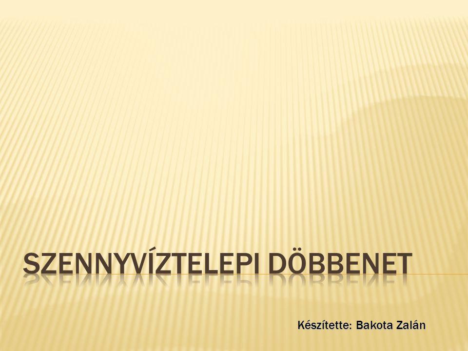 Debreceni Vízmű Rt.Csatornahálózati Üzem 4002 Debrecen, Vértesi út 3.