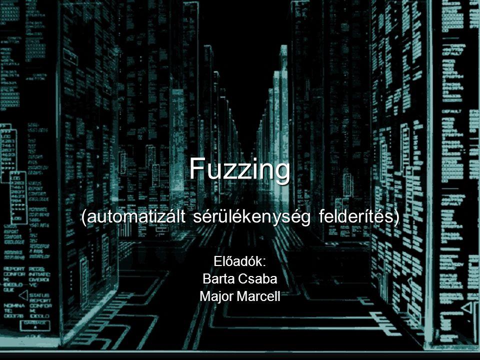 Fuzzing (automatizált sérülékenység felderítés) Előadók: Barta Csaba Major Marcell